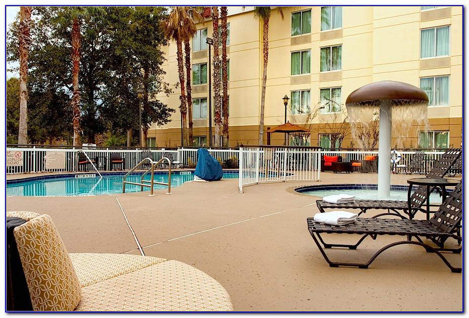Hilton Garden Inn Orlando Airport Orlando Fl 32822