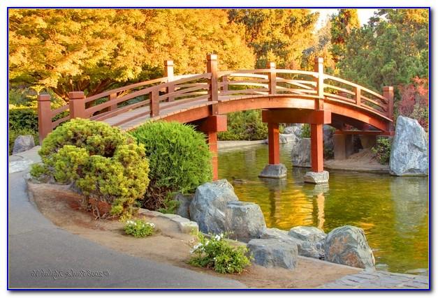 Japanese Friendship Garden San Jose Photo Permit