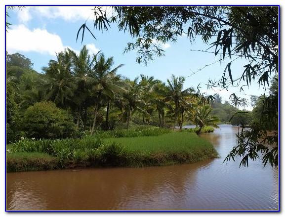 National Tropical Botanical Garden Hours