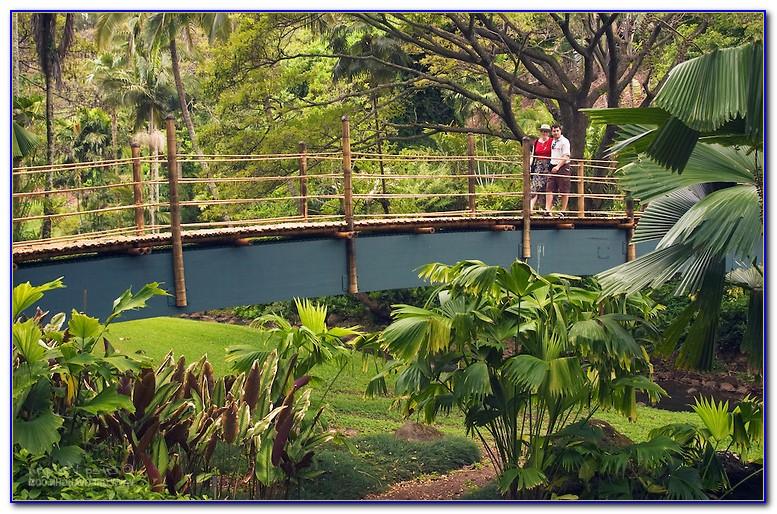 National Tropical Botanical Garden Lawai