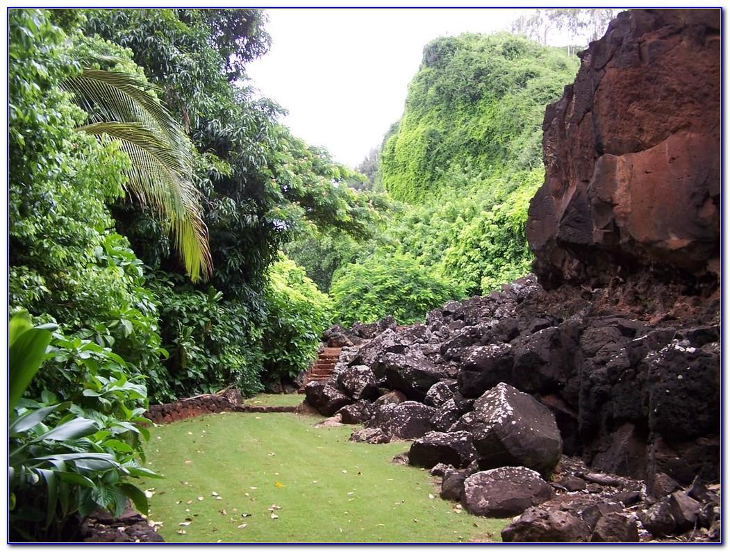 National Tropical Botanical Garden Miami