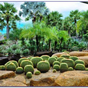 Nong Nooch Tropical Botanical Garden Tour