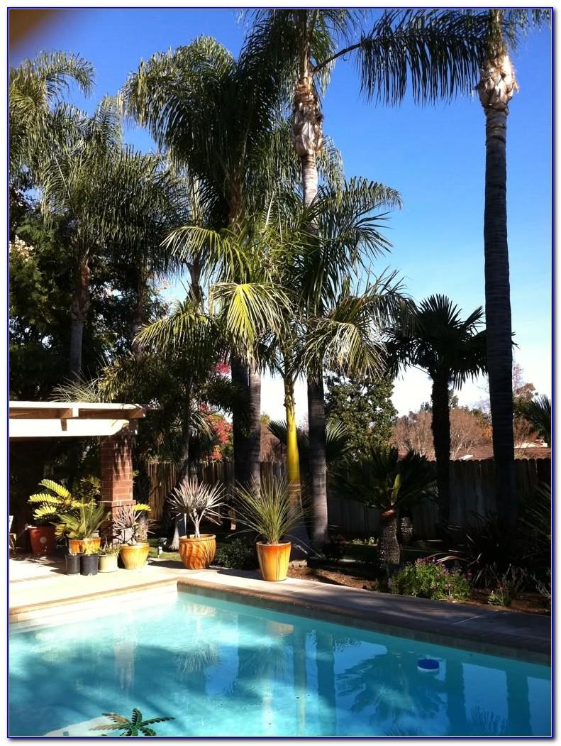 Palm Gardens Nursing Home Jobs