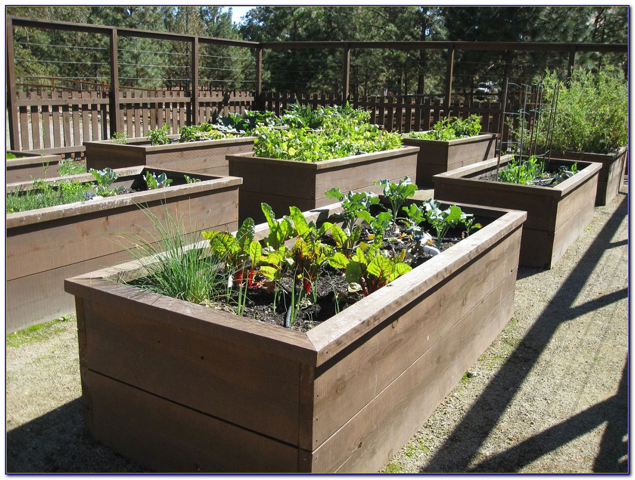 Raised Garden Beds Plans This Old House