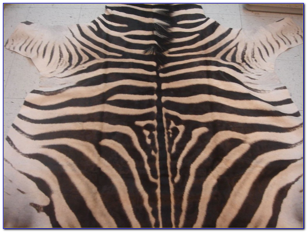 Zebra Skin Rug South Africa