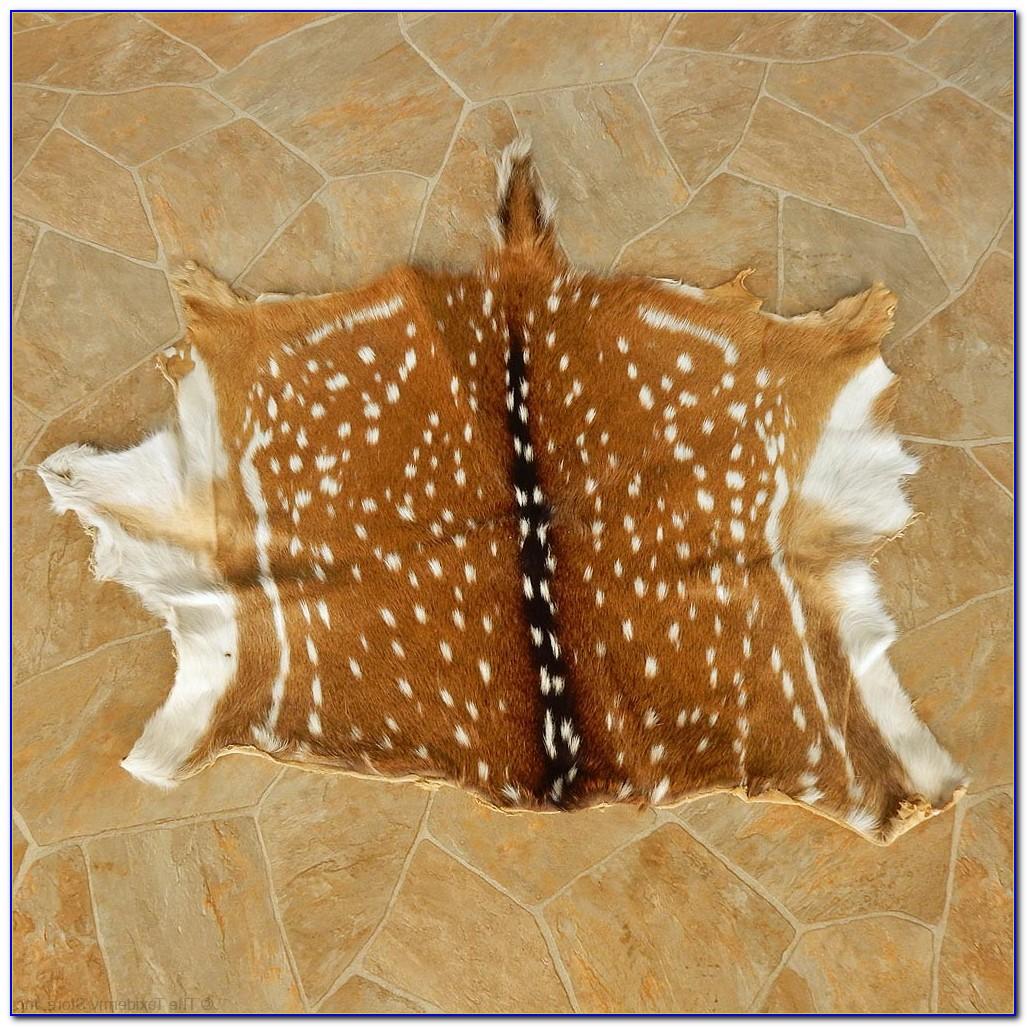 Deer Skin Rug Australia