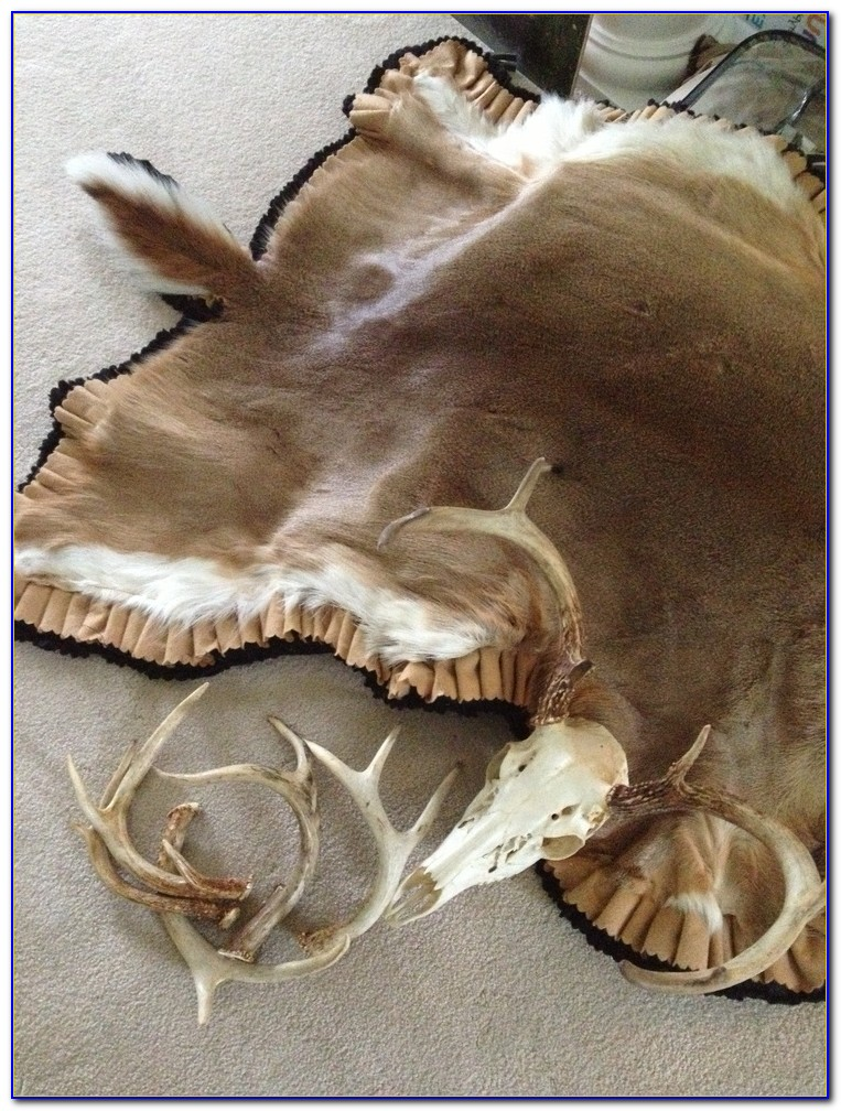 Deer Skin Rugs For Your Home