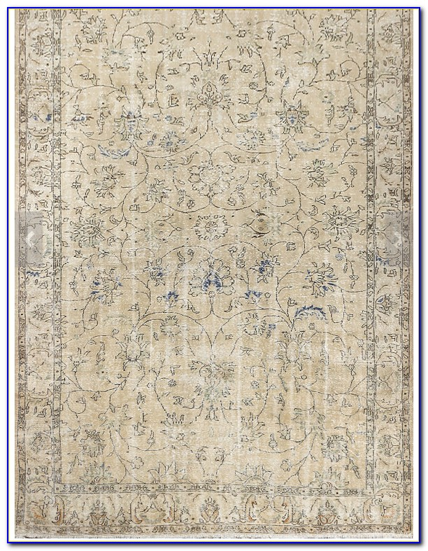 Large Neutral Area Rugs