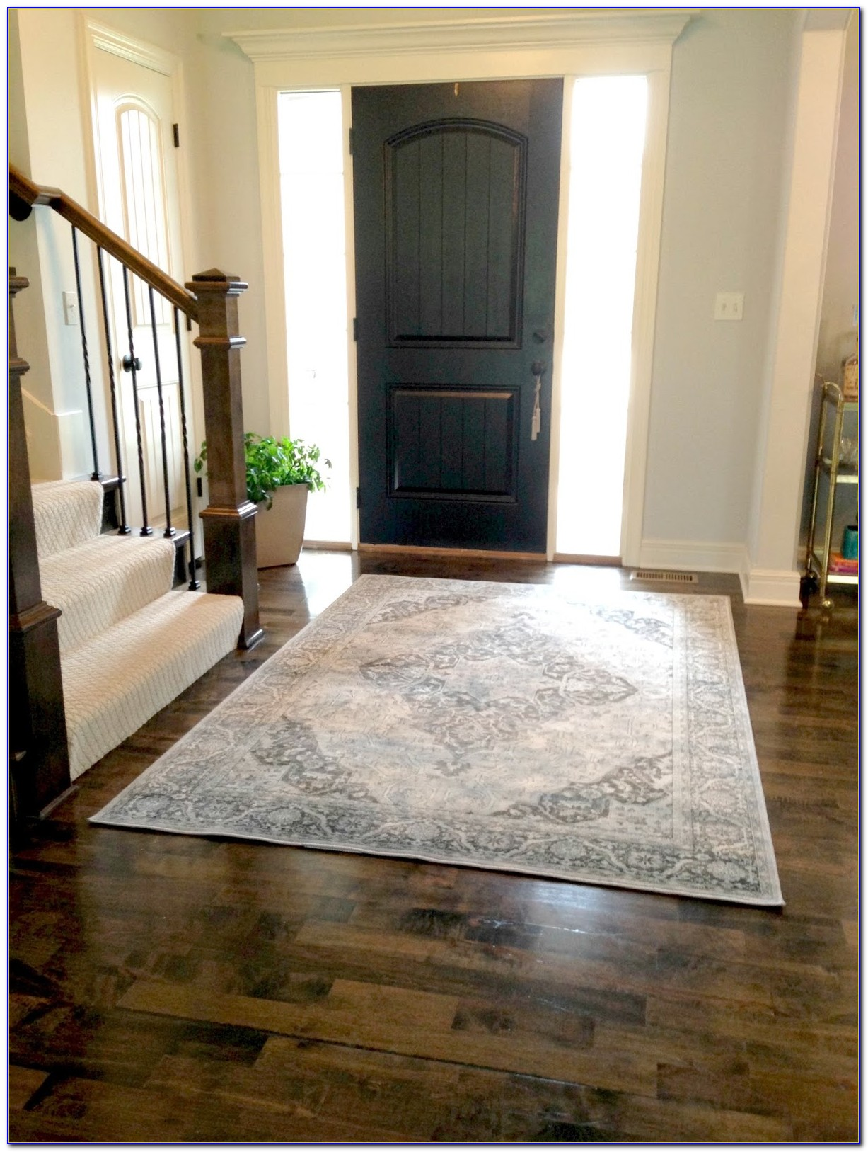 Indoor Outdoor Entryway Rugs