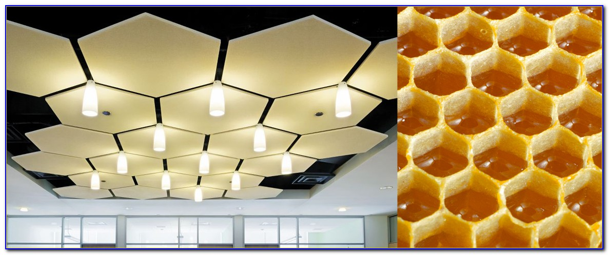 Armstrong Acoustical Ceiling Tile Installation