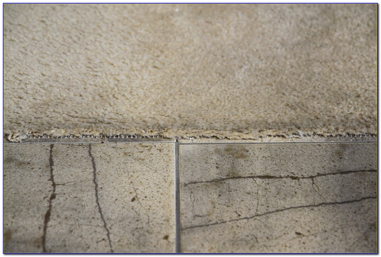 Carpet To Tile Transition No Strip