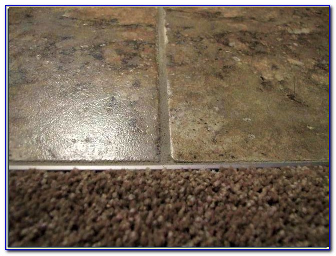 Carpet To Tile Transition Strip On Concrete