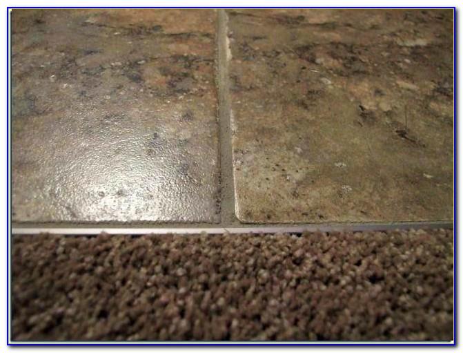 Carpet To Tile Transition Strip On Concrete