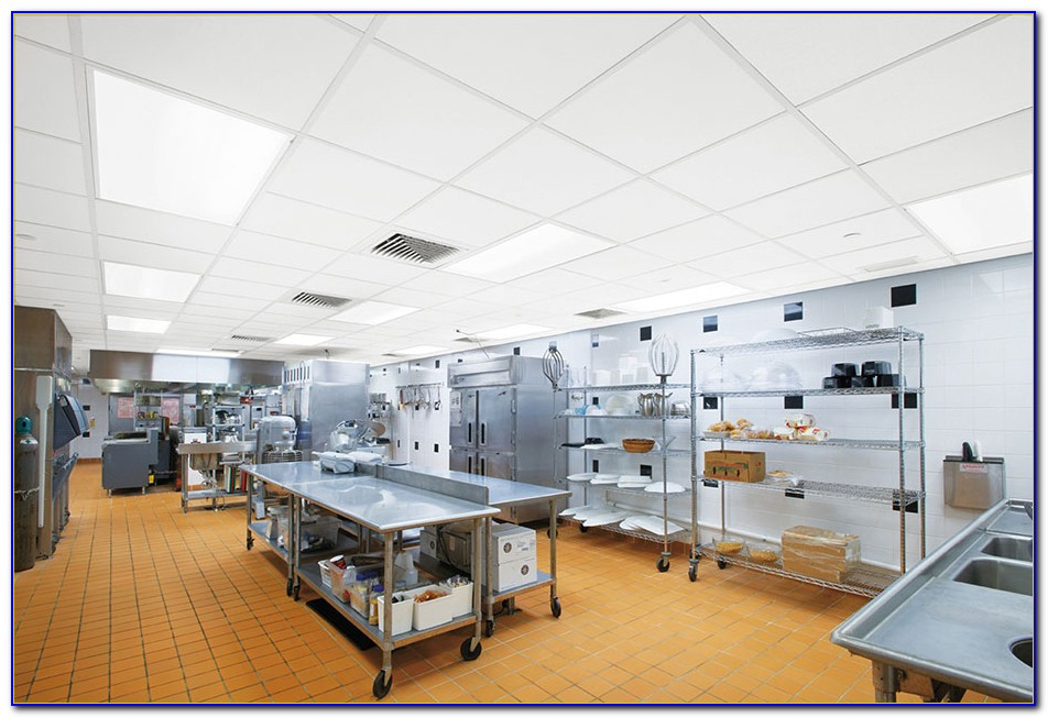 Commercial Kitchen Ceiling Tiles 2x4