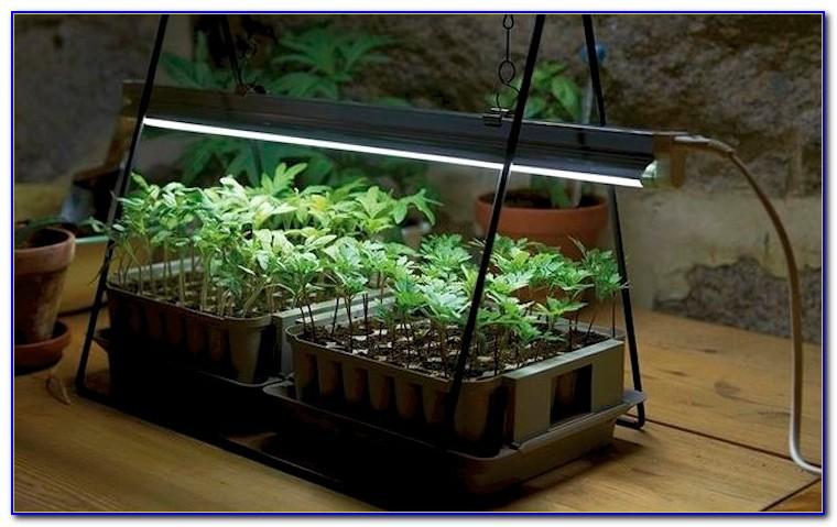 Diy Table Top Grow Light