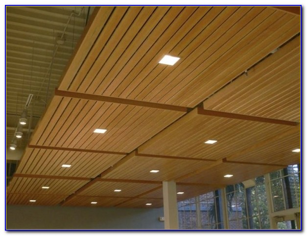 Drop In Ceiling Tiles 2x2