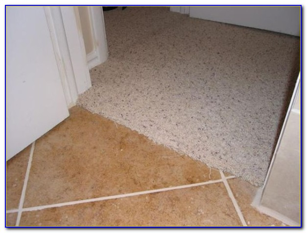 Johnsonite Carpet To Tile Transition Strips