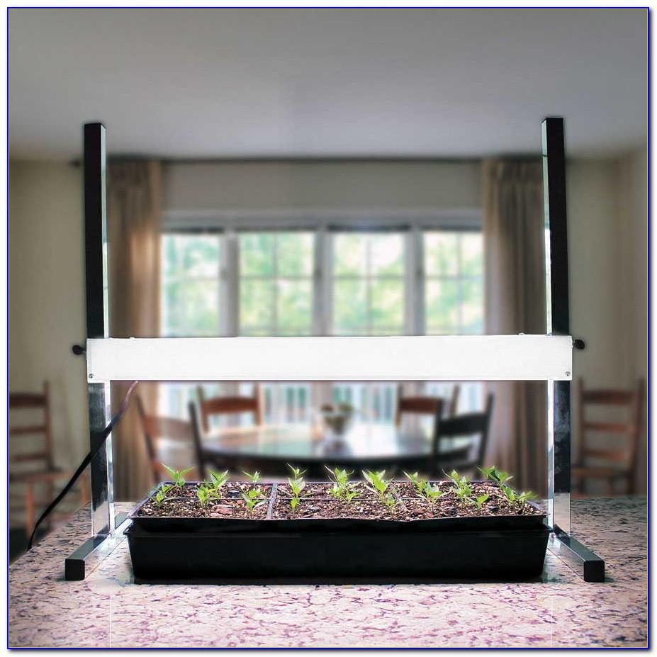 Tabletop Grow Light