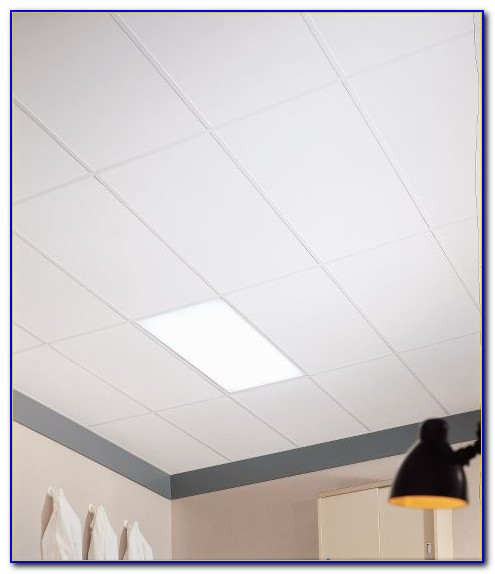 Clean Room Ceiling Panels