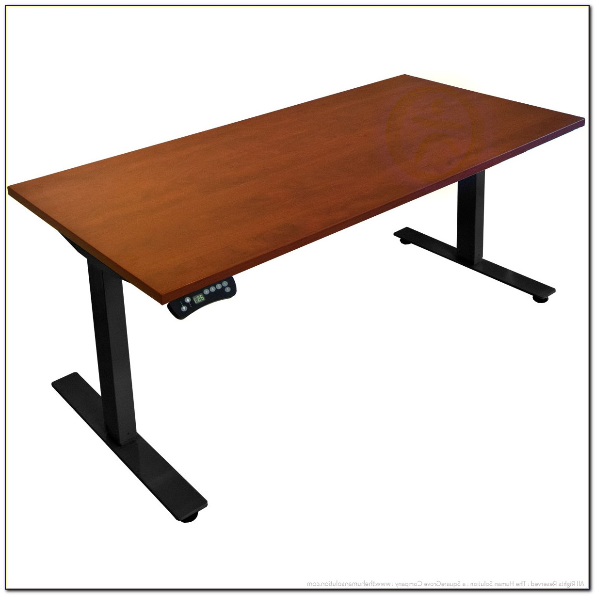 Electric Sit Stand Desk Canada