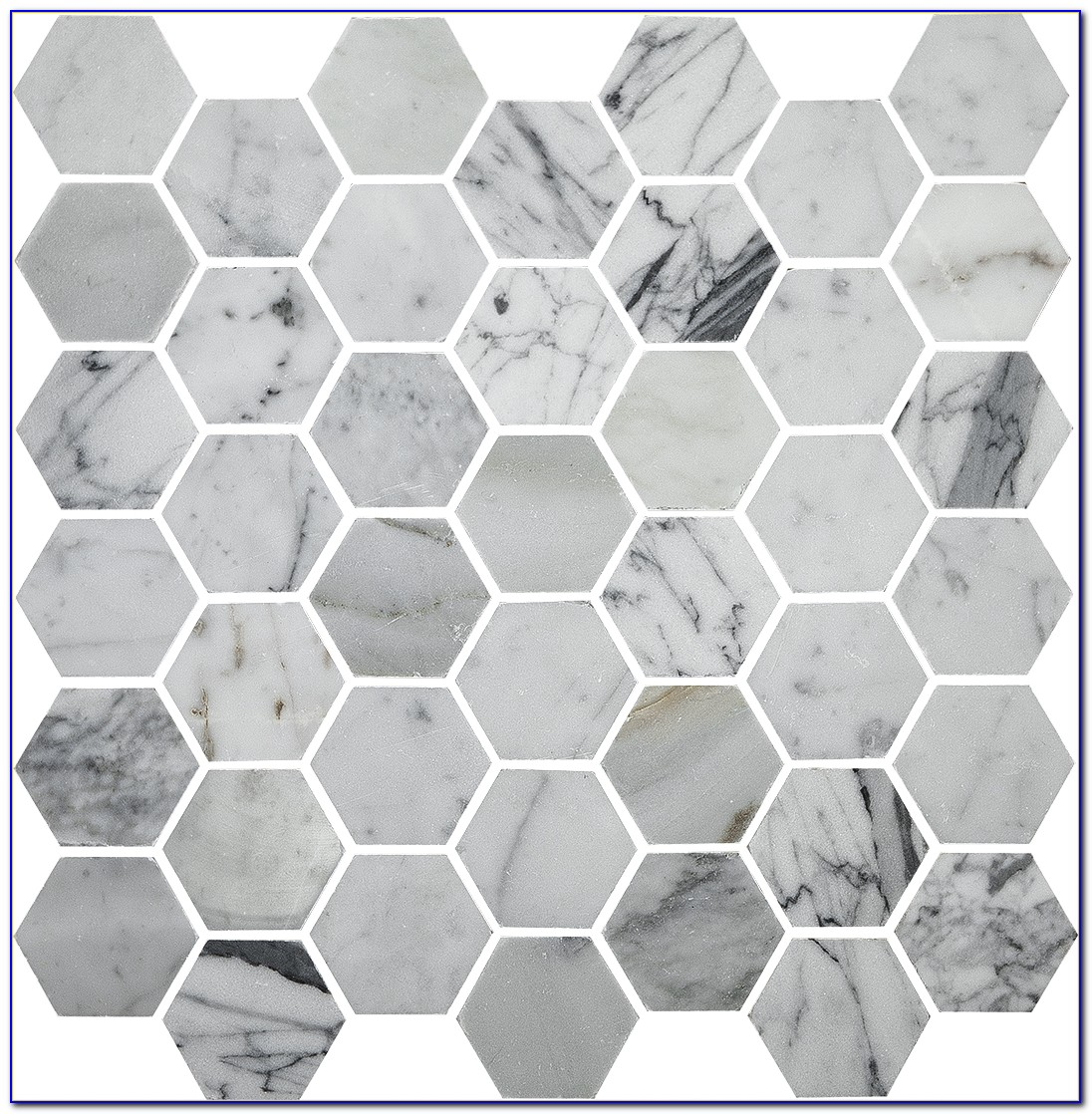 Statuary Carrara Marble Hexagon Tile