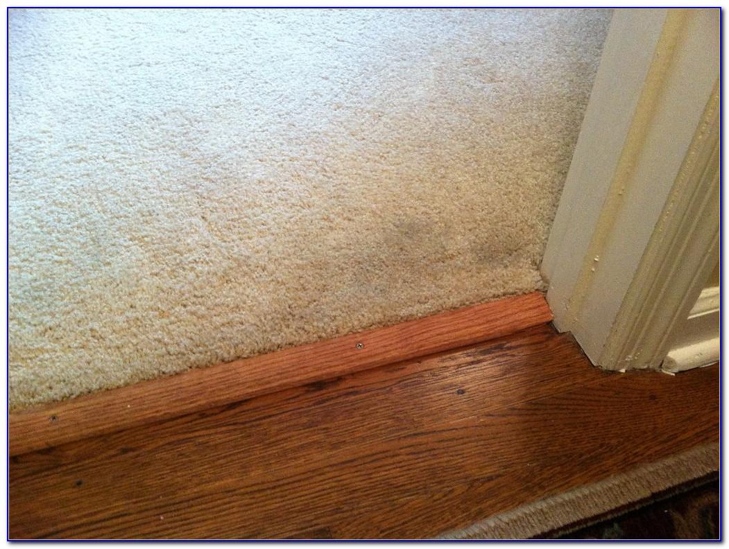 Tile To Carpet Transition Strip Installation