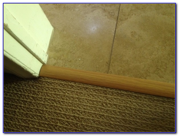 Tile To Carpet Transition Strip On Concrete