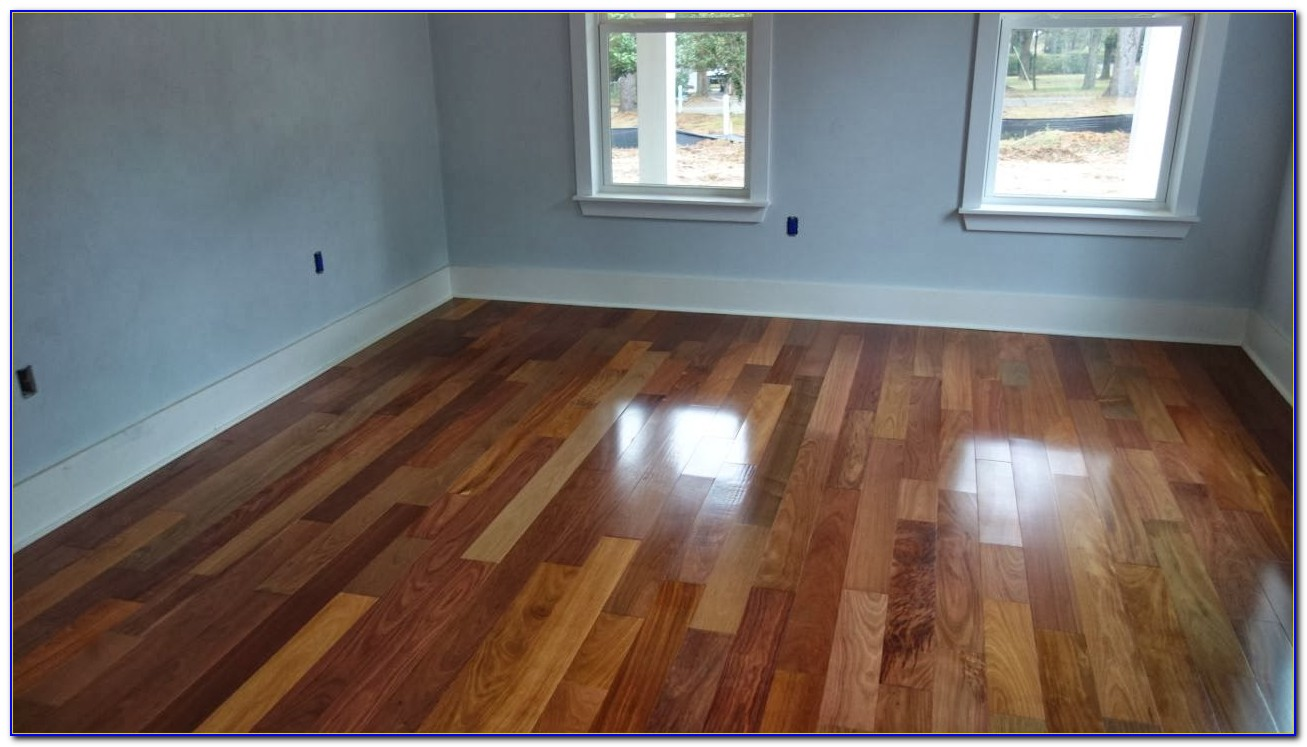 Roomba For Hardwood Floors And Carpet