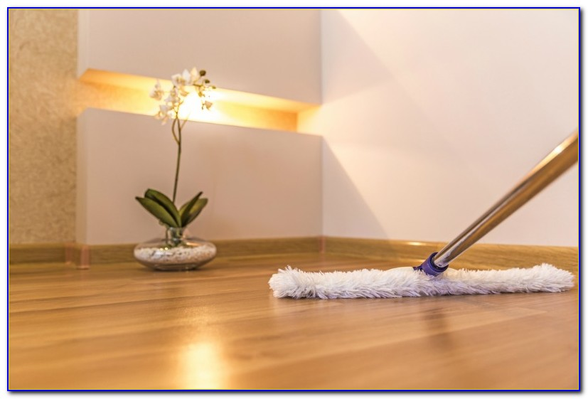 Steam Mop For Wood Floors