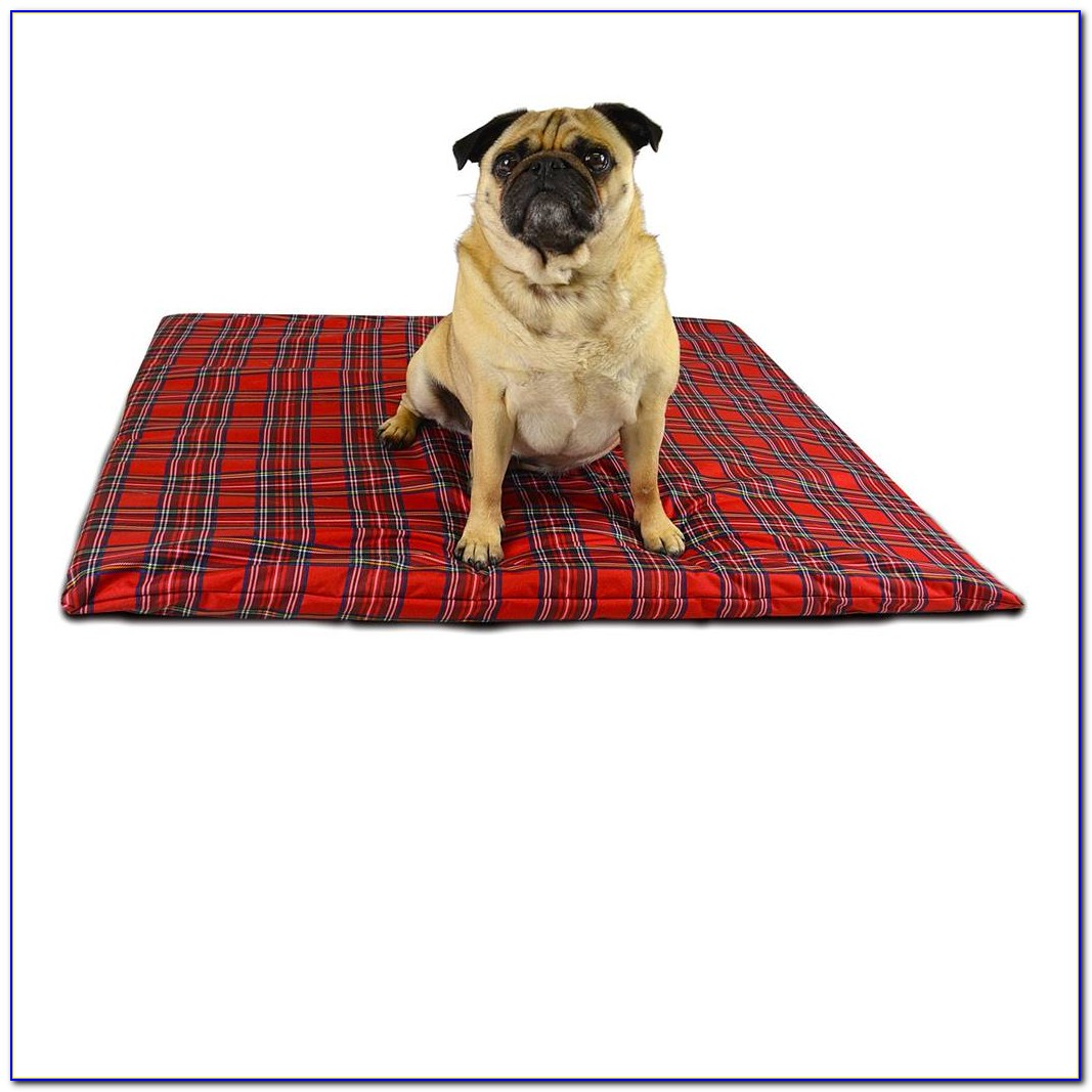 Rubber Floor Mats For Pets