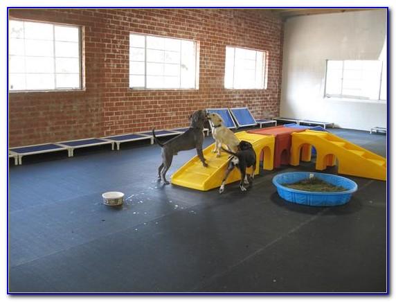 Rubber Flooring Tiles For Dogs