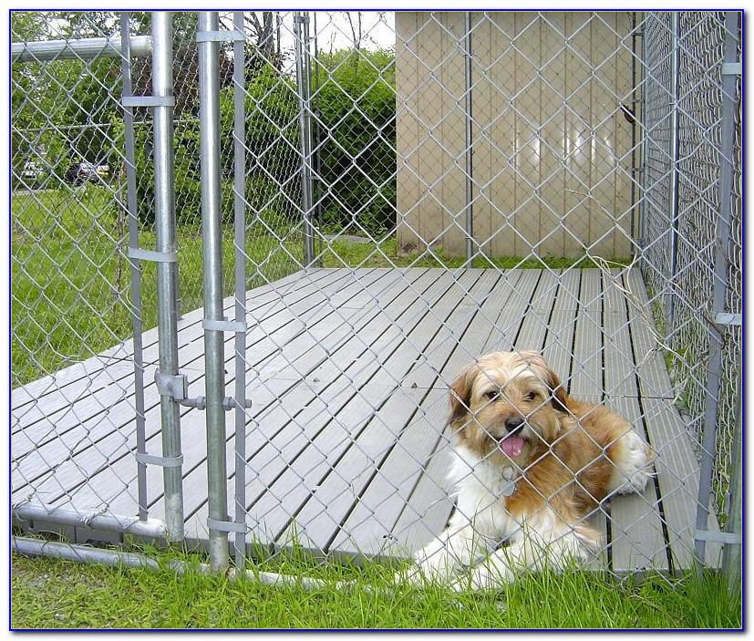Flooring For Outside Dog Kennel