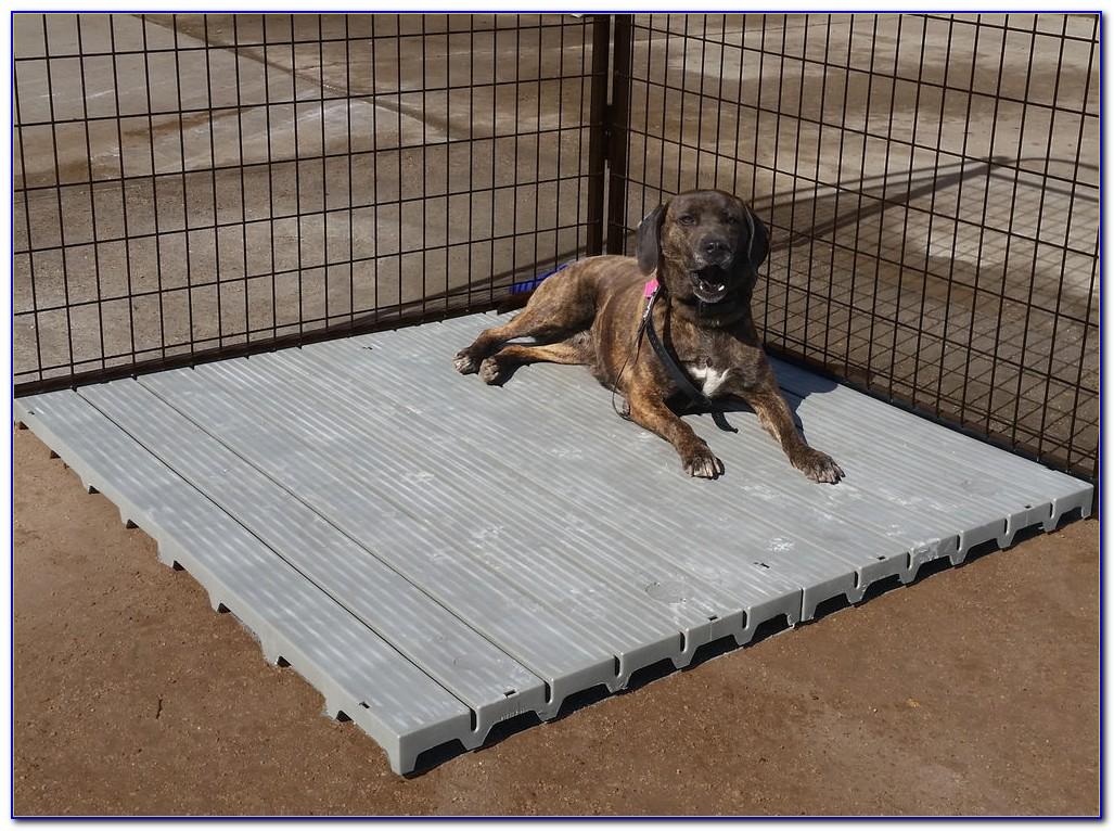Flooring Ideas For Dog Kennel