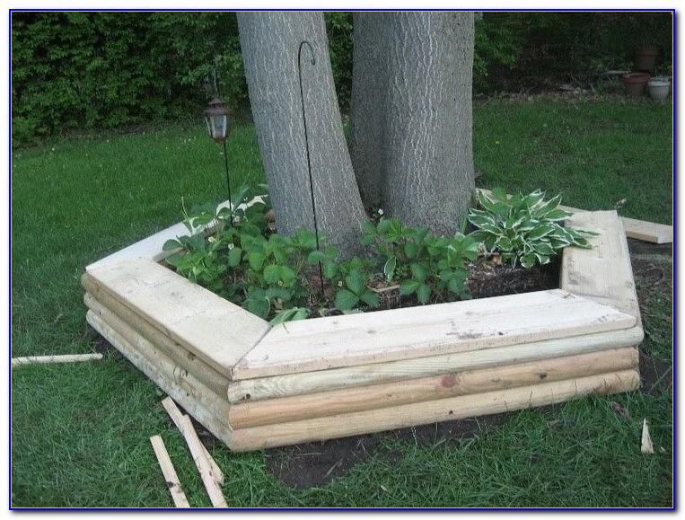Build Bench Around Tree Trunk