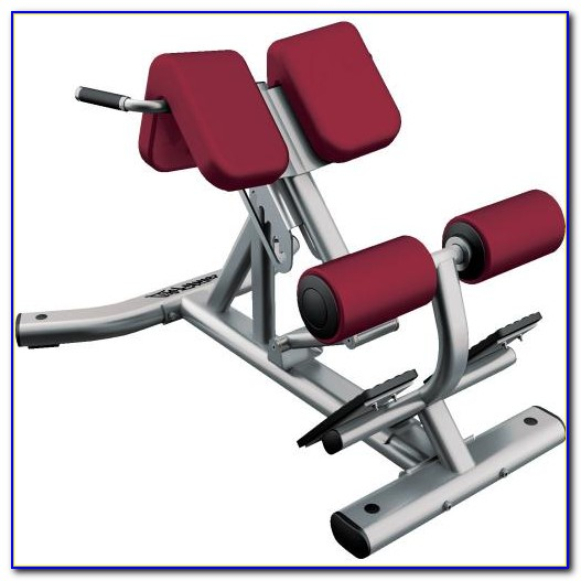 Life Fitness Bench Press Bar Weight