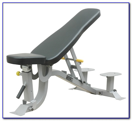 Olympic Weight Bench With Spotter