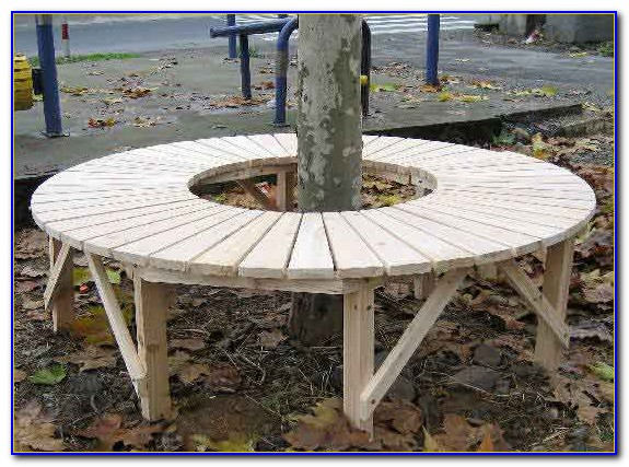 Semi Circular Bench Around Tree