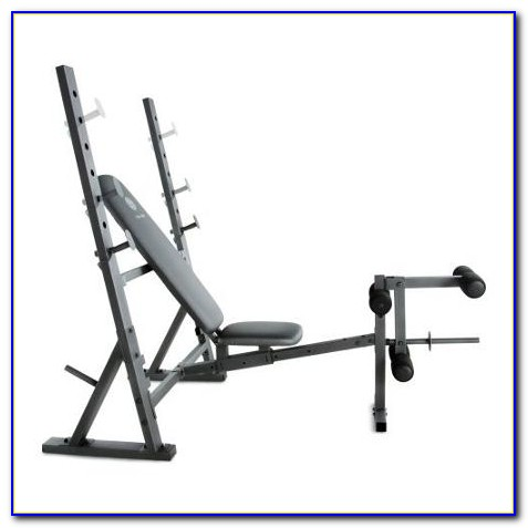 golds gym weight bench exercise guide  bench  home