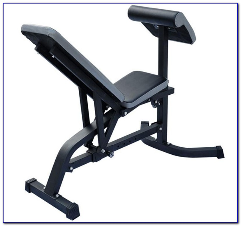 Workout Bench With Preacher Curl