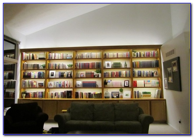 Bookcase Bed With Lights