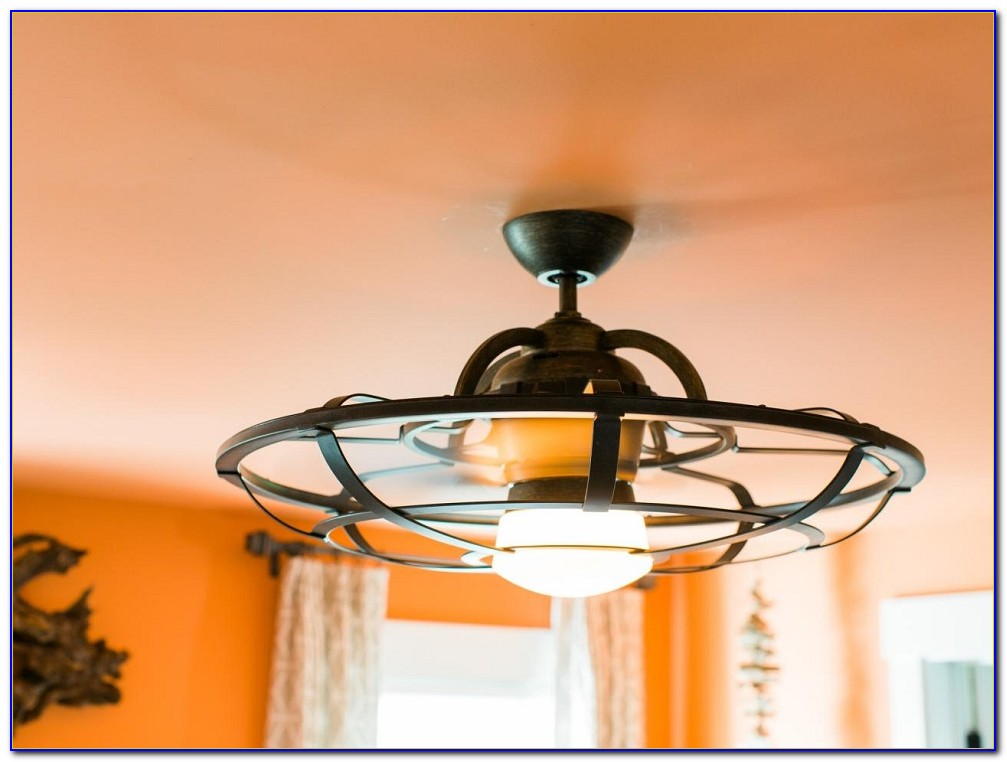 Cage Covered Ceiling Fan With Light