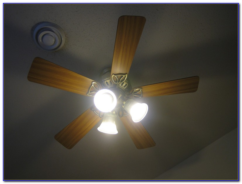 Ceiling Fan Light Bulbs Small Base