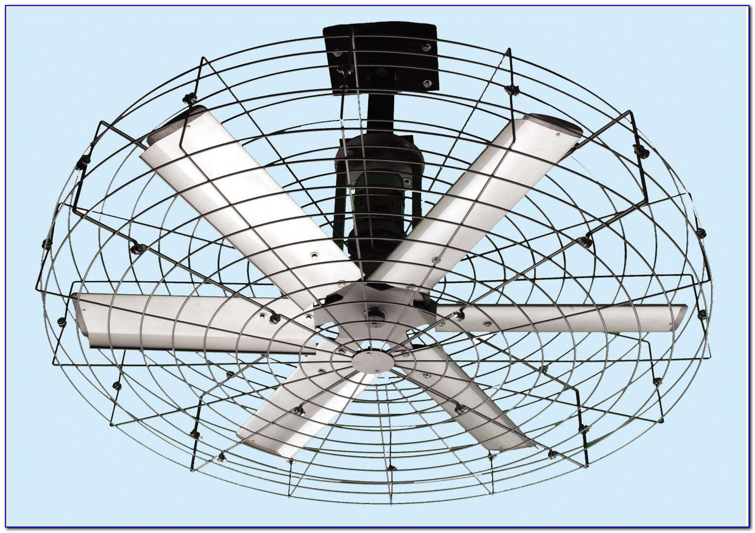 Ceiling Fan With Wire Cage