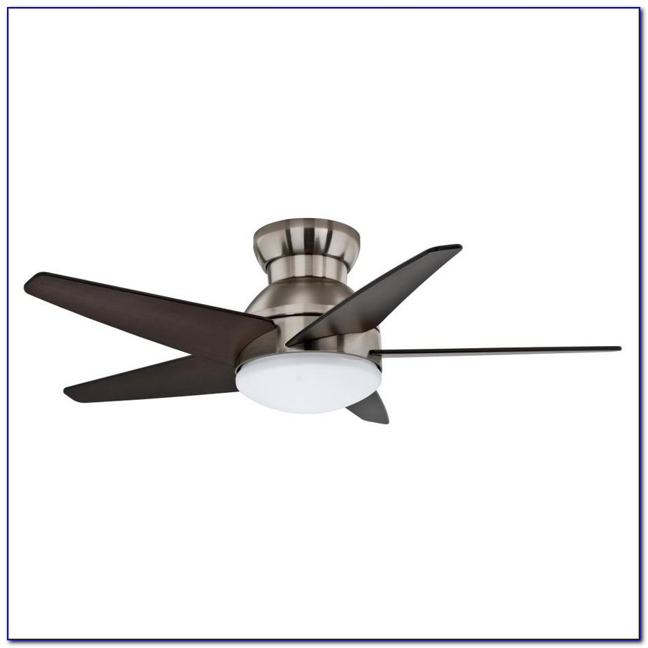 Ceiling Fans Flush Mount Contemporary