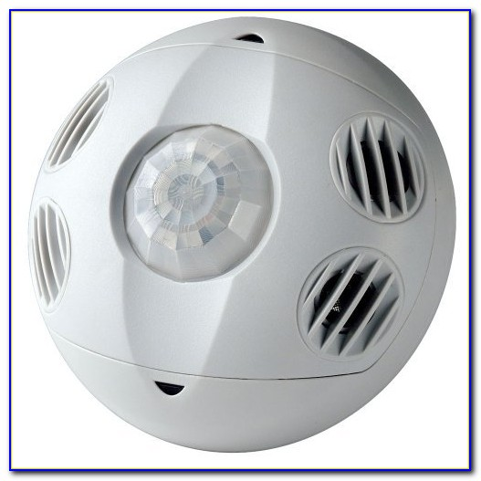 Ceiling Mount Occupancy Sensor Light Switch