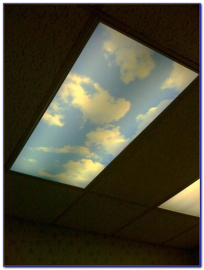 Decorative Fluorescent Ceiling Light Covers