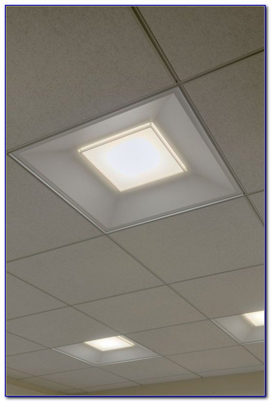 Drop Down Ceiling Led Lights