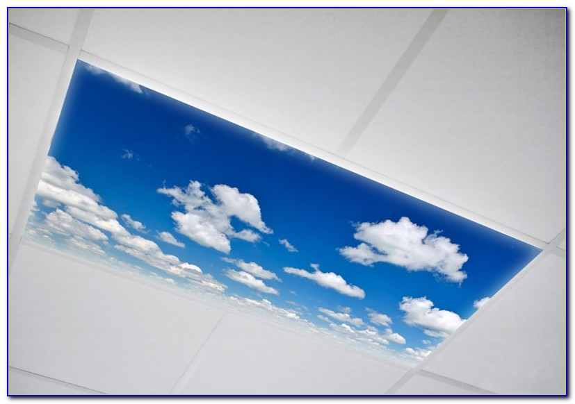 Fluorescent Ceiling Light Covers Plastic