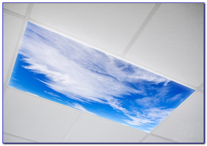 Fluorescent Ceiling Light Covers