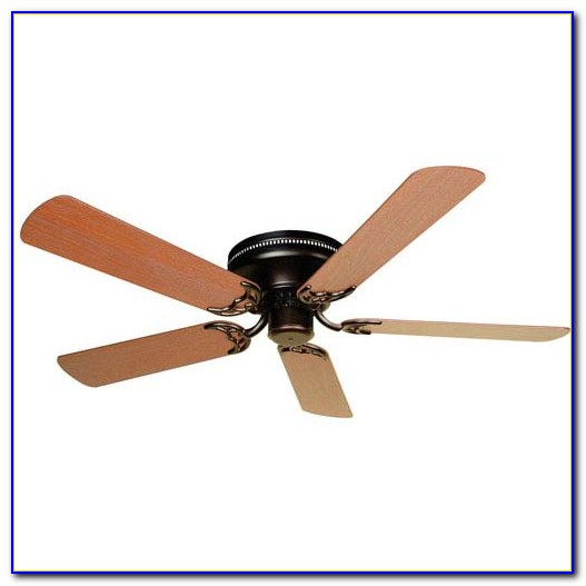 Flush Mounted Ceiling Fans With Light